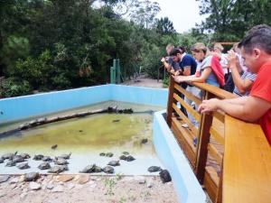 quando visitar Florianópolis, aproveite para conhecer o Parque do Rio Vermelho