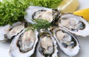 ao visitar Florianópolis experimente as famosas ostras