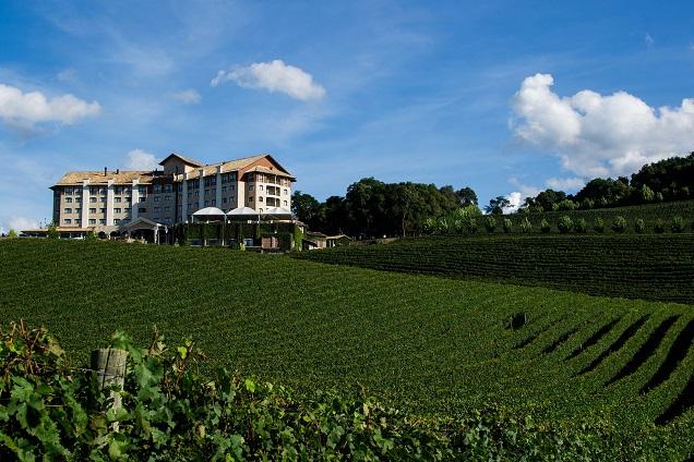 Bento Gonçalves é um destino excelente para quem busca boa comida e vinho