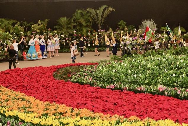 Festa das Flores em Joinville - Foto: Divulgação Festival das Flores