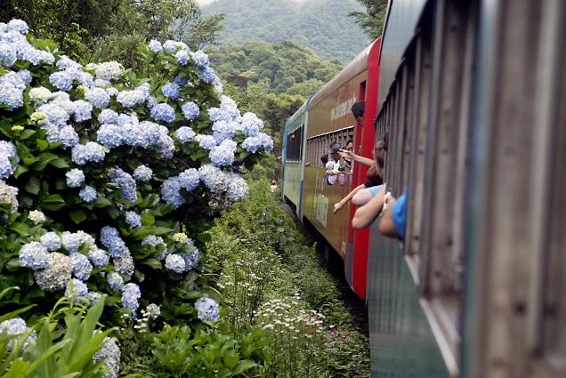 Trem entre Curitiba e Morretes passa pela Mata Atlântica. Foto: Serra Verde Express/Divulgação